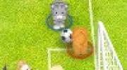 Pet Soccer
